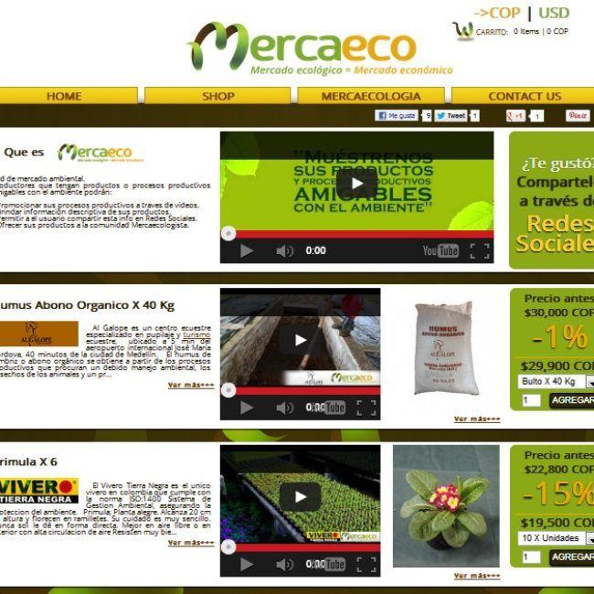 Sitio Web Mercaeco
