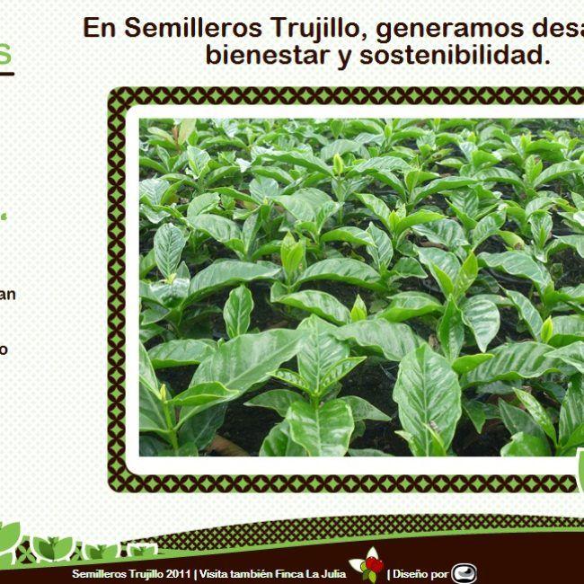 Pàgina Web Semilleros Trujillo