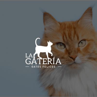 Sitio Web La Gatería
