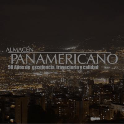 Posicionamiento SEO | Almacén Panamericano